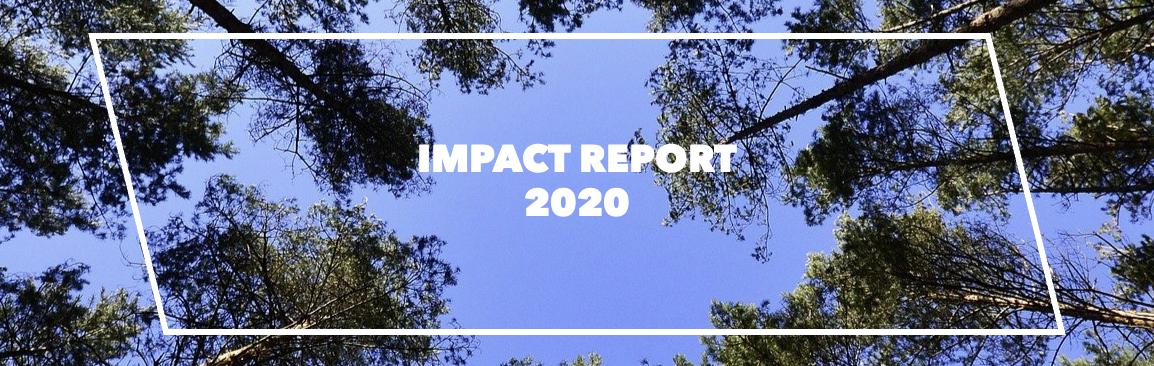 Capagro Impact Report 2020 Title
